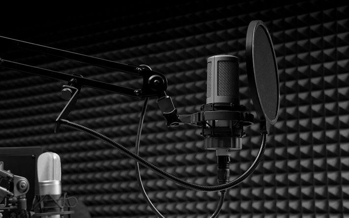 Descargar fondos de pantalla Micrófono, sonido, estudio de grabación, cantando concepto, quiosco de música
