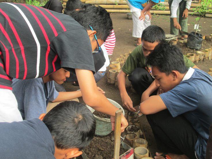 Plant a garden 0n 18 december 2015.