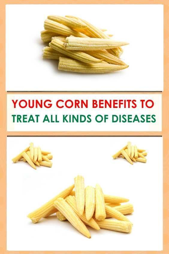YOUNG CORN BENEFITS TO TREAT ALL KINDS OF DISEASES #bloodpressure #cornandleaves #Youngcornbenefits