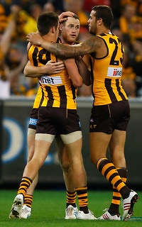 Round 8, 2013 - Roughead kicks 5 goals to lead the Hawks to another win!