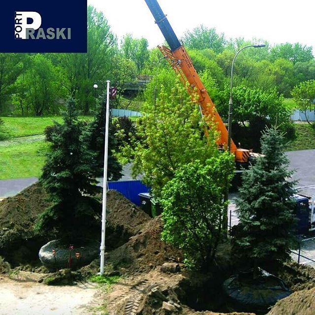 Port Praski ceni przyrodę, dlatego na terenie inwestycji odbyła się akcja przesadzania świerków. Ponadto jedną z najważniejszych części Portu Praskiego będzie teren zielony o powierzchni około pięciu hektarów, dostępny dla wszystkich warszawiaków, a w szczególności mieszkańców Pragi-Północ.  #PortPraski #warszawa #warsaw #Poland #Polska #przyroda #terenyzielone #drzewa #świerki