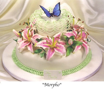 Novelty Cakes by Scott Clark WoolleyButterflies Theme, Cake Design, Clark Woolley, Cake Photos, Amazing Cake, Novelty Cake, Scott Clark, Butterflies Metamorphosis, Butterflies Cake