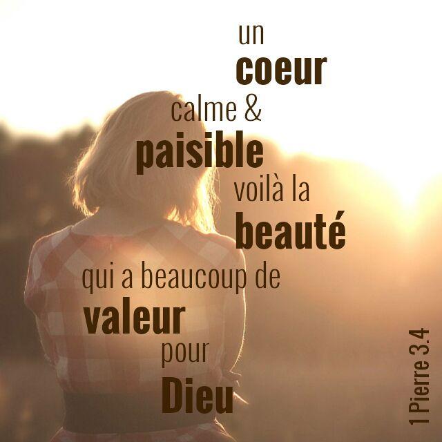 1 Pierre 3:4                                                       …