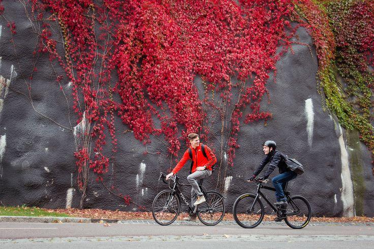 Timo & Kimmo on the bikes to work