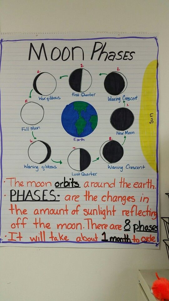 This is a fun activity that you can do to show how the moon looks relative to its position with the sun and earth.