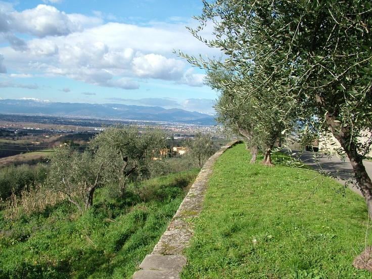 Vista da San Martino alla Palma