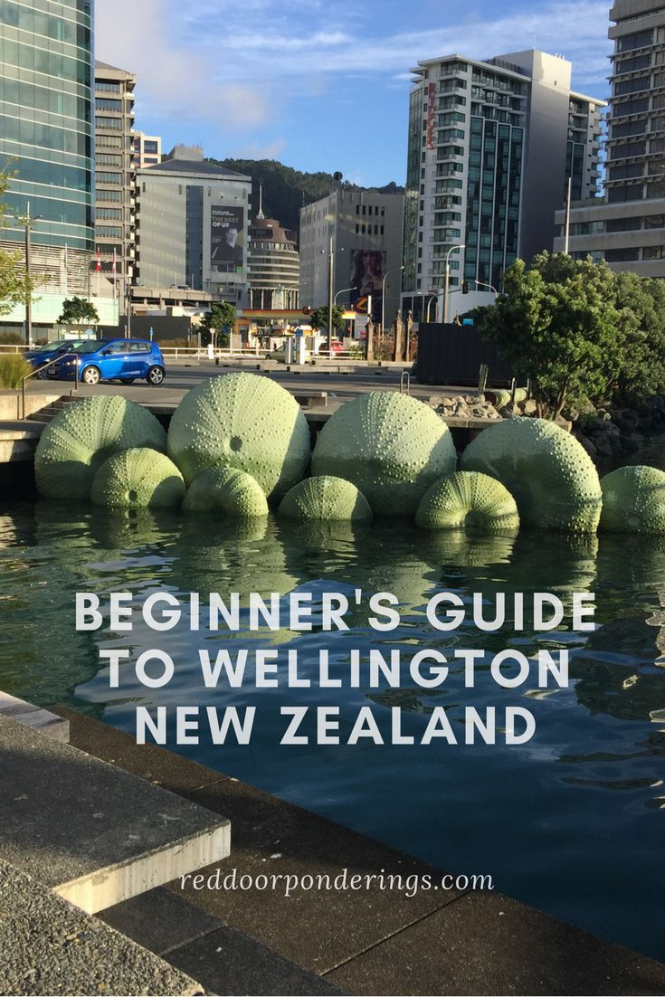 Wellington, New Zealand   Wellington restaurants   places to eat in Wellington   Things to do in Wellington, New Zealand   what to do in Wellington, New Zealand