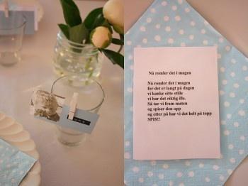 bordkort blå dynmo