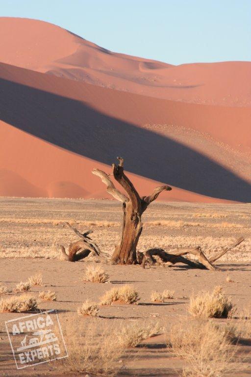 Namibia - luonto