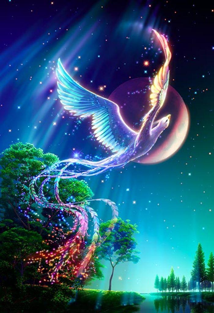 Phoenix by Kagaya