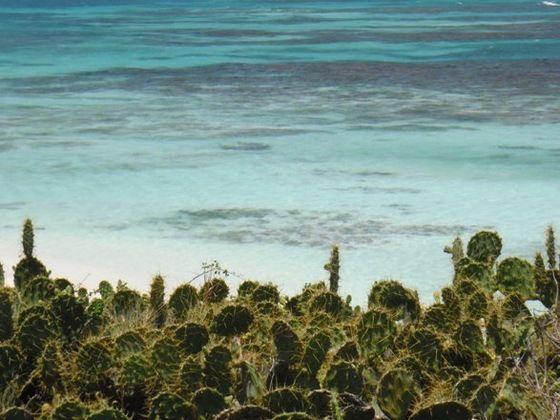 21 Best Paesaggi Di Mare Sea Landscapes Images On