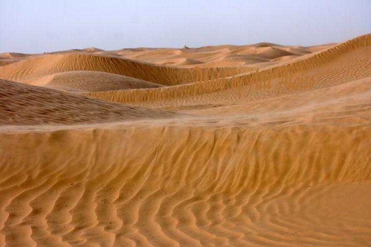 In SAHARA, Tunisia Africa by Aili Alaiso
