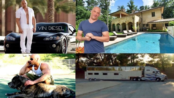 Vin Diesel's Biography  Net Worth  House  Cars  Pets - 2016.  Born on: 18th Jul 67 Born in: Dominican Republic Marital status: Married Occupation: Actor Hollywood Vin Diesel net worth is estimated at $75 million. A Hollywood superstar 48 Vin Diesel is well known as the dashing macho actor. Though Vin didn't get any acting background in childhood he managed to make his unique place in Hollywood and establish the huge Vin Diesel net worth after working for 22 years. He has grown from working…