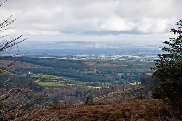 Slieve Bloom Mountains (County Laois / Ireland) by !eberhard, via Flickr