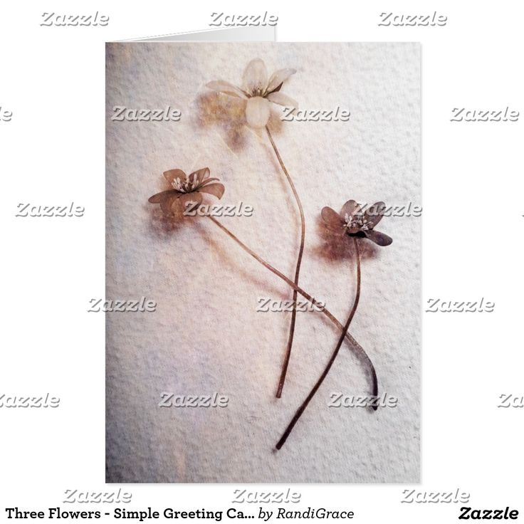 Three Flowers - Simple Greeting Card