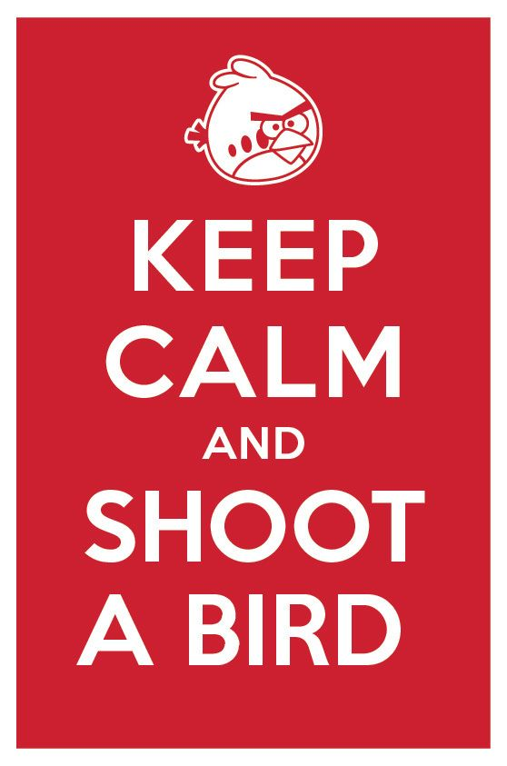 This should say keep calm and shoot the bird instead, then it'd be a cute shirt