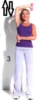 tricipiti esercizi braccia
