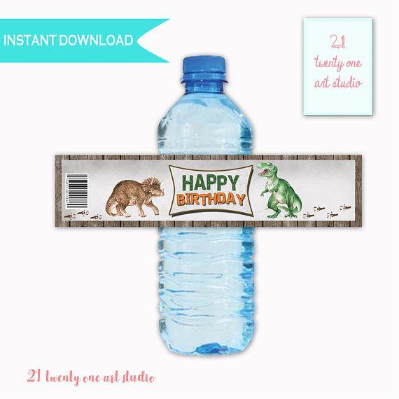 Dinosaur Printable Water Label Birthday Printable  Water