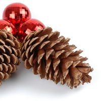 During the fall and winter months, nothing elicits fond memories like the warming scents of cinnamon and spices. During these months grocery and craft stores often sell pine cones scented with these favored fragrances. Store-bought scented pine cones are often expensive and only found during the holiday season. You can easily make your own scented...