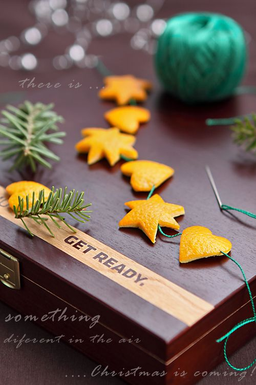 Inspiration. I knew I should have kept my orange peels! Cookie cutter shapes strung together with twine.