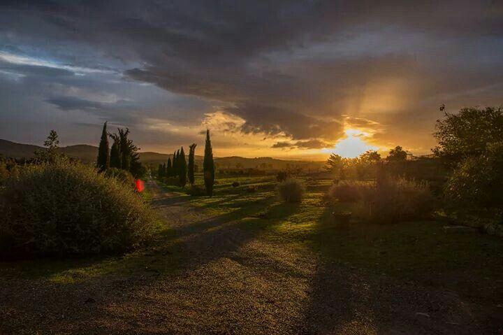 Sunset on the Valentina Road #agriturismolavalentina