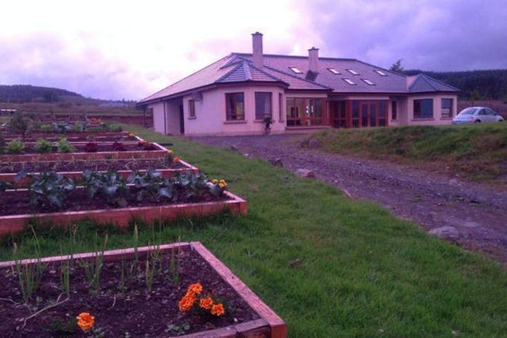 Lus Mor Dorm Bed 7 - Bed & Breakfasts for Rent in Roundwood, Co.Wicklow, Ireland