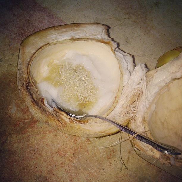split coconut jelly global table adventure split coconut jelly ...