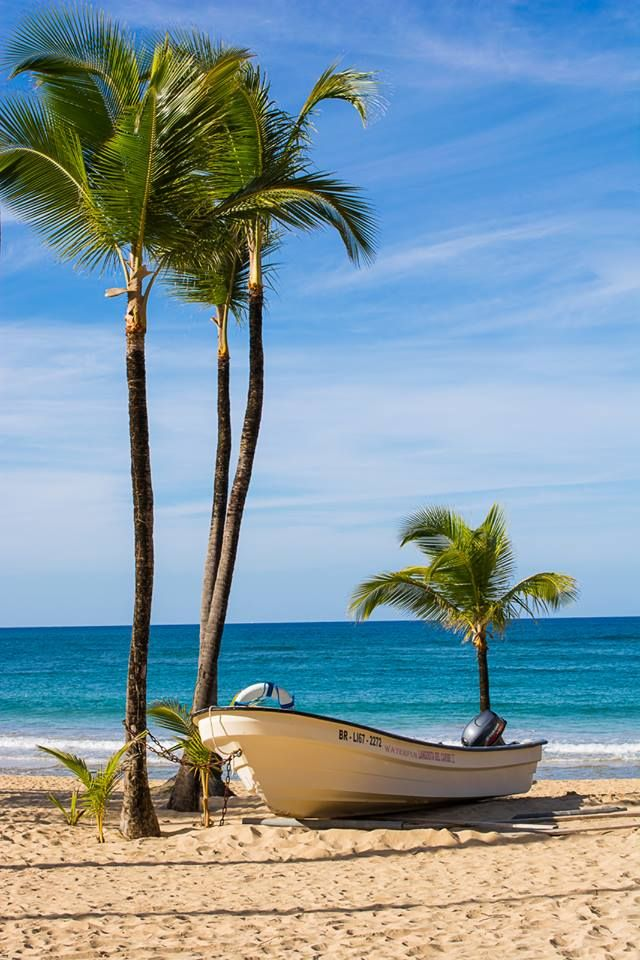 486 best images about dominican republic on pinterest for Best tropical beach vacations