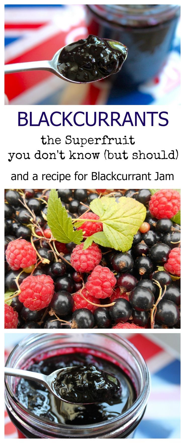 Blackcurrants: one of the best SUPERFRUITS ever, and a recipe for Blackcurrant Jam