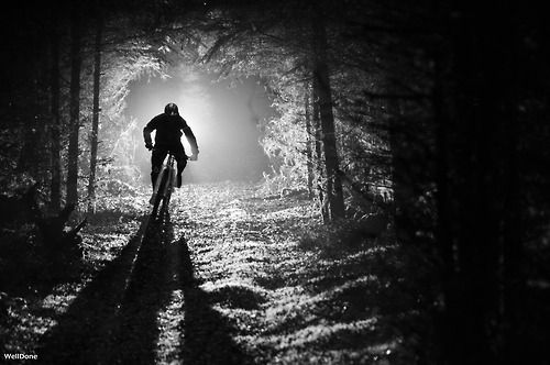 Mountain bike rider riding his bike through a dimly lit forest. A great piece of photography of a cool looking mountain bike rider.