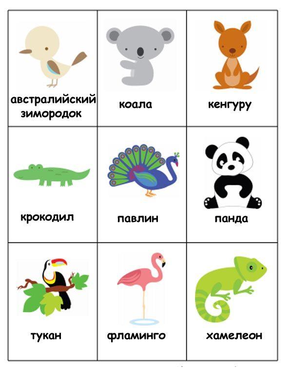Животные Африки в картинках и играх для детей