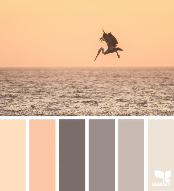 Color palette { creature color } image via: @amandarimmerphotography