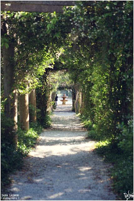 wilmington wedding venues airlie gardens dana laymon photography