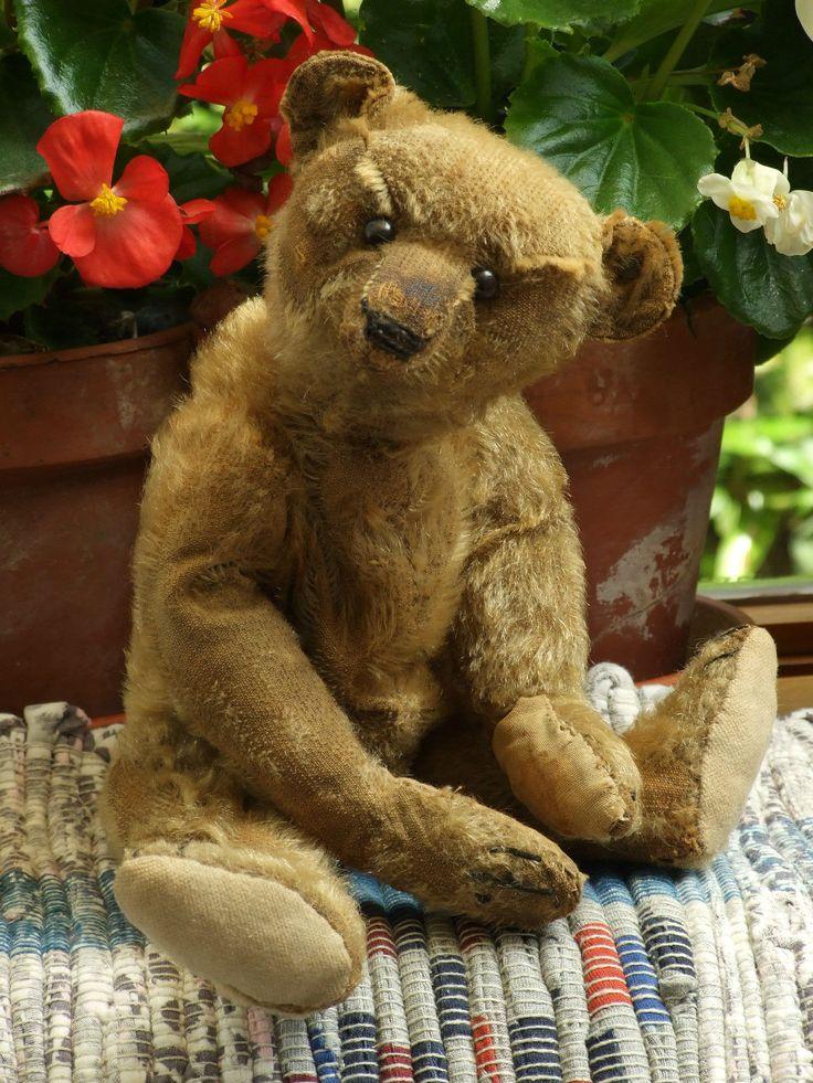 3311 best Vintage teds images on Pinterest | Teddybear, Old ...
