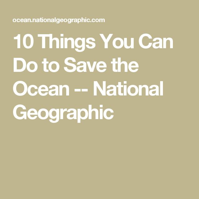 10 Things You Can Do to Save the Ocean -- National Geographic
