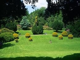 I remember these HW gardens, with or without snow they were so cool!