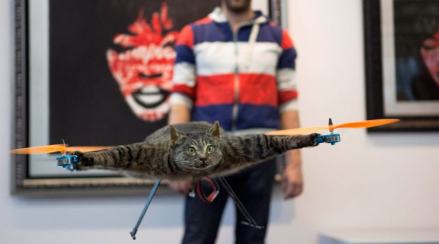 Words fail me- The 102nd thing to do with a dead cat:  Orvillecopter: The dead cat turned into a helicopter.
