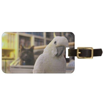 It's behind me...isn't it? luggage tag - accessories accessory gift idea stylish unique custom