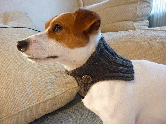 Aww A Li L Scarf Sale Ready To Ship Knitted Grey Dog