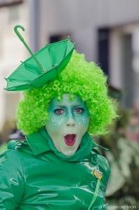 De 11 genomineerden van de Fotoactie 2013 | Vastelaovend en Carnaval in Limburg