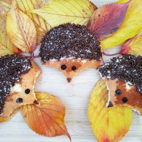 Hedgehog hagelslag (chocolate sprinkles) pancakes breakfast