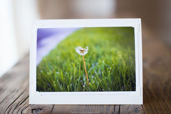 "Photo card ""Dandelion"" by Gorillajin"