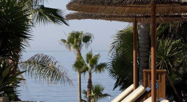US$335 В числе удобств этого роскошного курортного отеля прямой выход на пляж Средиземного моря, 4 бассейна, 5 ресторанов и спа-салон площадью 1 500 квадратных...