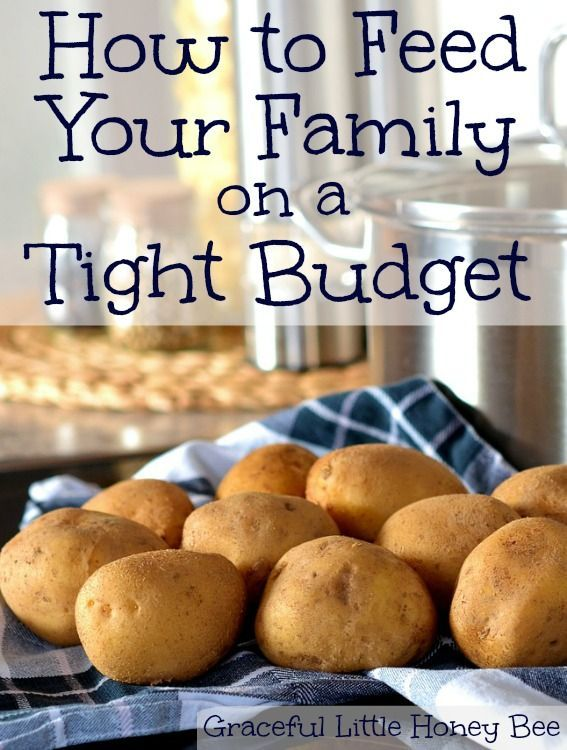 Learn how to feed your family on a tight budget from a frugal stay-at-home mom.