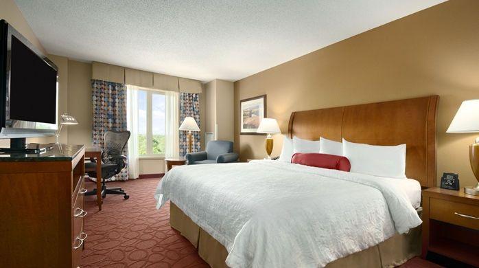 Hilton Garden Inn Chicago OHare Airport Hotel, IL - King Bedroom | IL 60018