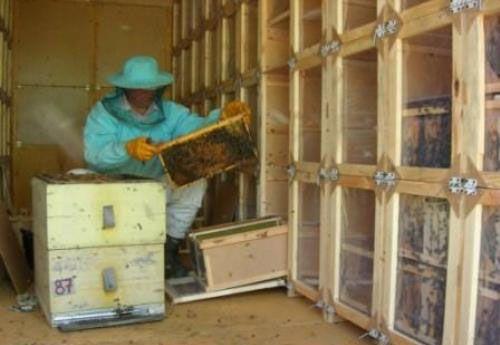 """Павильон для пчел: делаем своими руками, конструкция """"Берендея"""""""