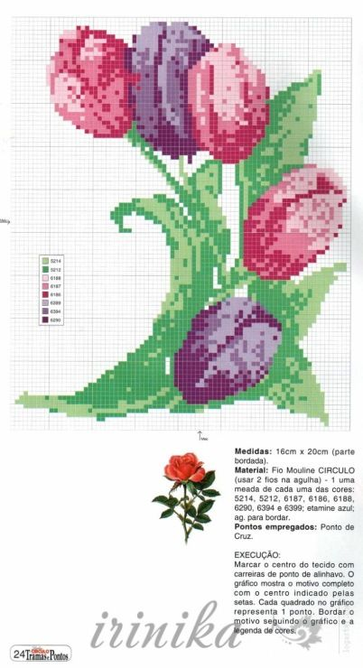 Gallery.ru / Фото #1 - тюльпаны - irinika