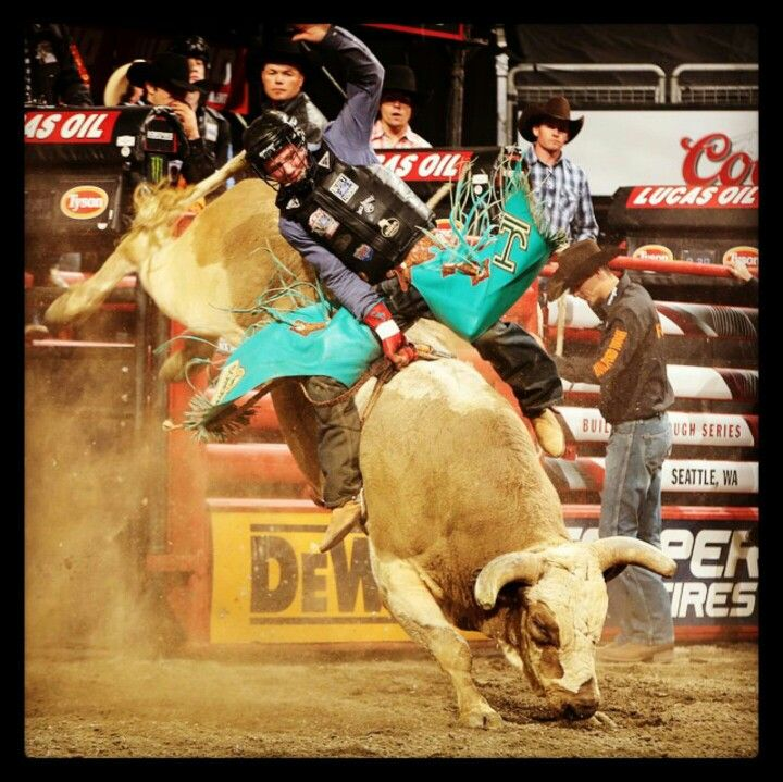 1000+ Images About Rodeo On Pinterest