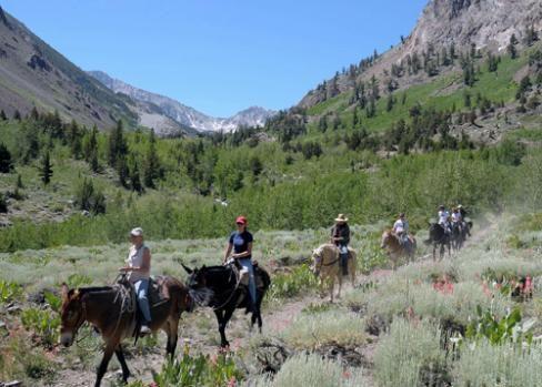 Horsebackriding at Mammoth Lakes, California, beautiful area to ride horses, we actually did this...