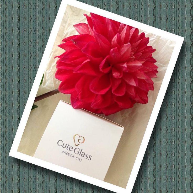 花言葉 「華麗」Red Dahlia  #cosme #cosmetics #skincare #スキンケア#soinsdelapeau #化粧品 #コスメ #madeinjapan #beauty #CG #CuteGlass  #japan  #happy #beauté #glass #硝子 #flower #flowers (N)